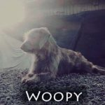 woopy1